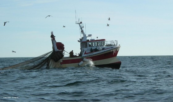 Pollution : Les marins pêcheurs tirent la sonnette d'alarme