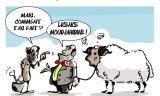 Prix des moutons