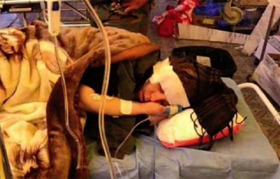 Blessée en Irak, la journaliste Samira Mouaki de retour en Algérie
