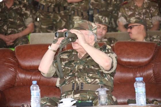 Gaïd Salah supervise un exercice tactique des forces terrestres