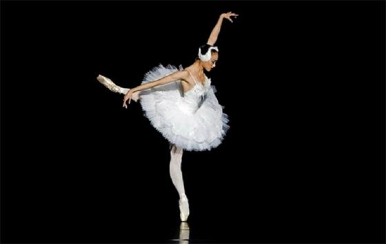 Le spectacle «Rêve d'une ballerine» enchante le public