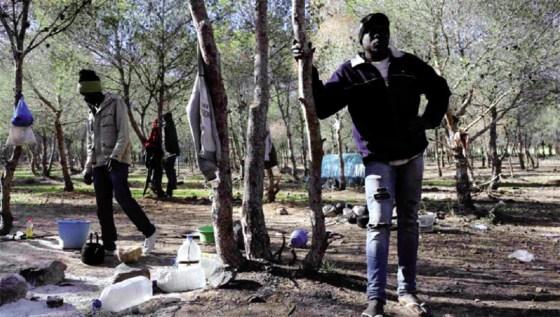 Messahel : «L'Algérie n'a de leçon à recevoir de personne»