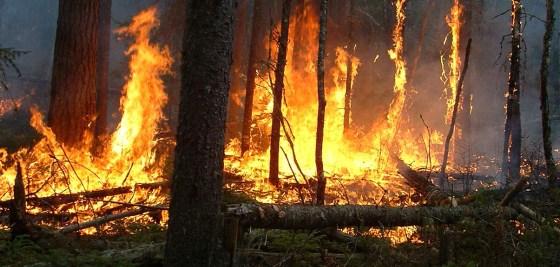 Un mort et deux personnes grièvement brûlées