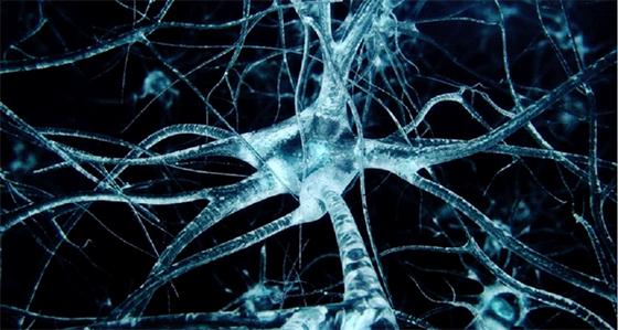 Structure atomique d'une protéine liée à la maladie d'Alzheimer