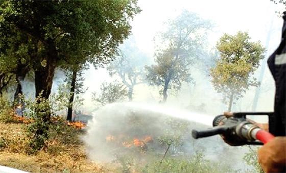 1 660 ha détruits depuis le début de l'été et 685 ha en deux jours