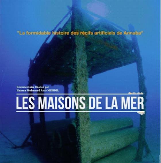 Projection du documentaire : Focus sur des récifs artificiels