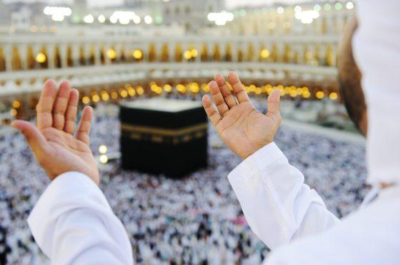 17 pèlerins décédés depuis le début du hadj