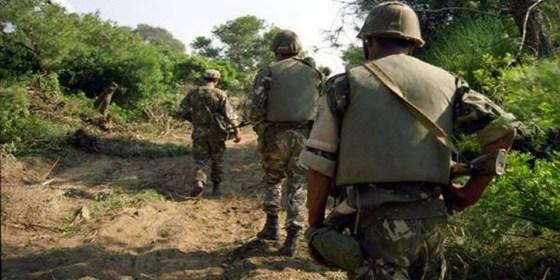Découverte de 2 casemates contenant des munitions à Djelfa