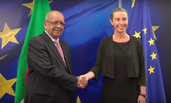 Terrorisme : Bruxelles déterminée à renforcer sa coopération avec Alger