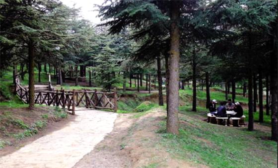 Lancement de l'aménagement du parc de loisirs de Ben Chicao