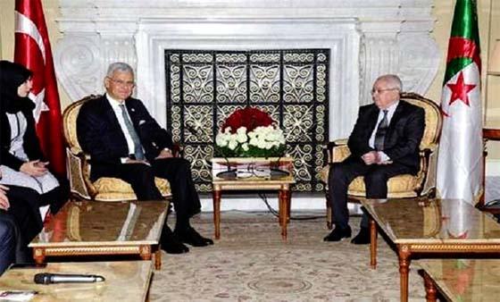 Alger et Ankara se concertent sur les grandes questions communes