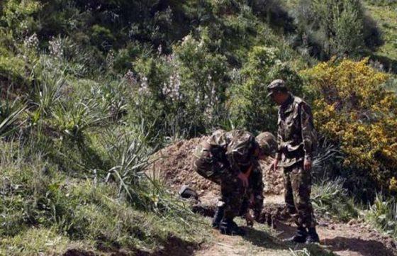 Un élément de soutien aux groupes terroristes arrêté à Bouira