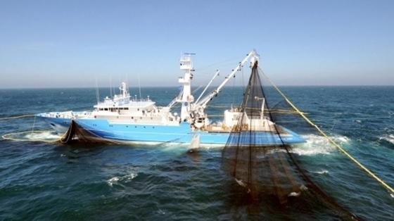 Pêche artisanale en Algérie : Un port réceptionné bientôt