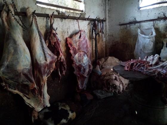 Près d'une tonne de viande avariée saisie à Constantine