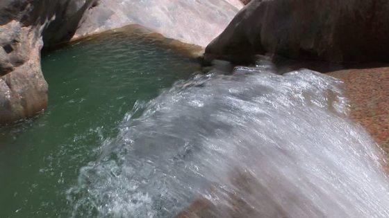 Choléra en Algérie: une source d'eau incriminée