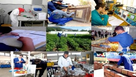 Enseignement professionnels:Plus de 10 300 stagiaires dans les différentes spécialités à Médéa