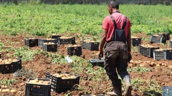 Vers l'autosuffisance agricole