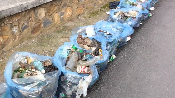 Opération de nettoyage à Béjaïa