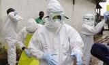 Mesures préventives pour éviter une propagation du virus Ebola à Tindouf