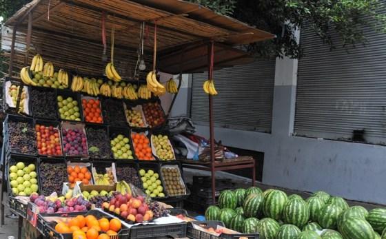 Filière fruits et légumes : Un cluster d'opérateurs à la quête du marché international
