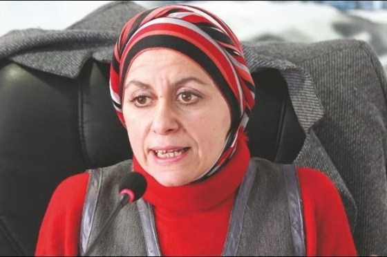 Louisa Dris-Aït Hamadouche: « L'article 102 ne signifie pas changement du système »