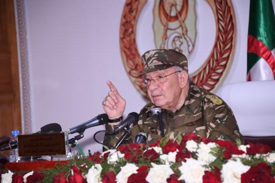 Gaïd Salah : « L'ANP veille sans répit à la sécurisation des frontières »