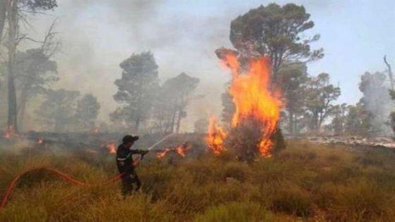 Blida : Un mort et des blessés dans un incendie à Ain Romana