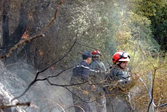 795 ha de végétation détruits à Béjaïa à cause de la canicule et feux de forê