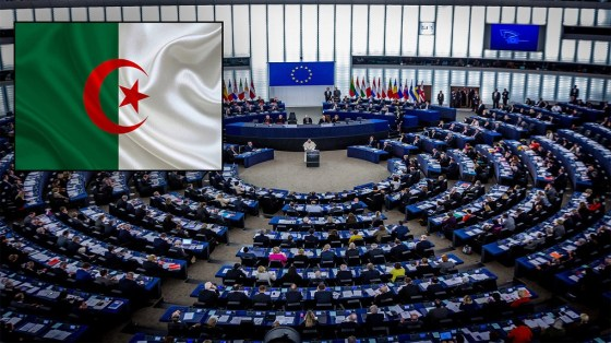 Parlement européen et Hirak : Timide réaction de la classe politique
