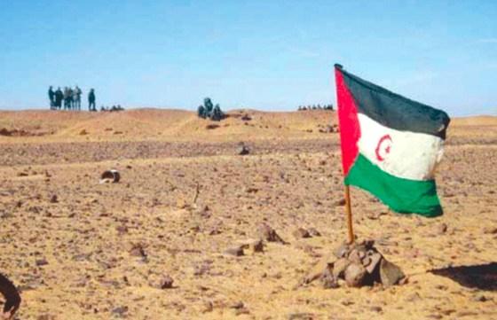 Sahara occidental : Wellington dénonce le pillage des ressources naturelles sahraouies