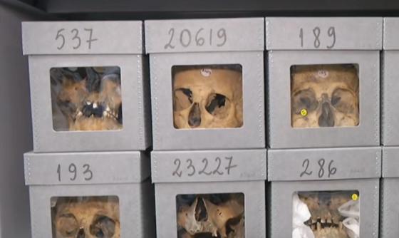 Les crânes de martyrs algériens: Ces oubliés