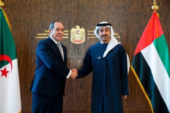 Le MAE émirati souhaite une hausse de la diaspora algérienne