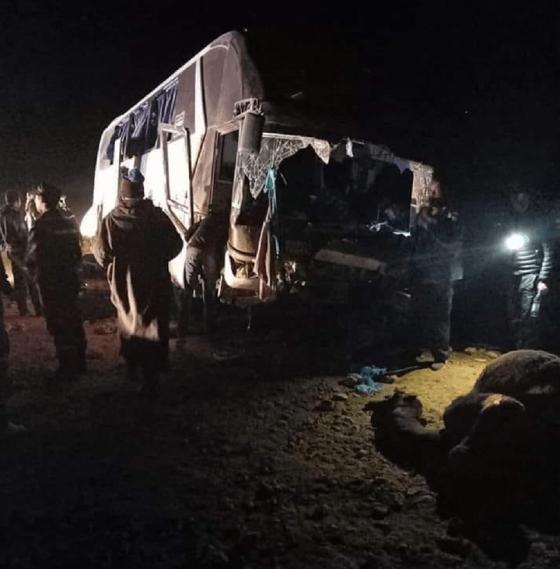 Un bus percute un chameau à Bechar: Un mort et 10 blessés