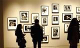 Exposition photos à Tlemcen : Regards sur novembre