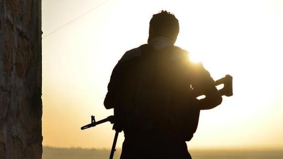 rapatriement des algériens à l'étranger: la crainte d'une infiltration des djihadistes