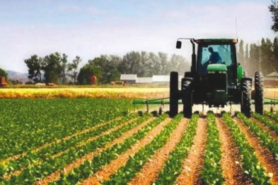 Plaidoyer pour une levée du confinement dans l'agriculture