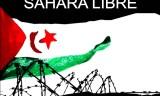 Ghali: «le peuple sahraouiest déterminé à mener son combat à terme»