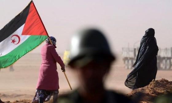 Le pillage de la RASD ne remplit plus les caisses du Makhzen