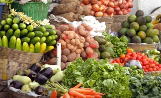 Pas d'importation des produits agricoles:  Le satisfecit de Omari