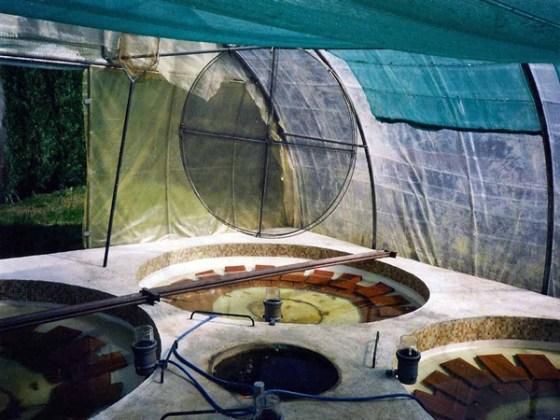 Tlemcen : 1er Salon régional ouest de la pêche et de l'aquaculture