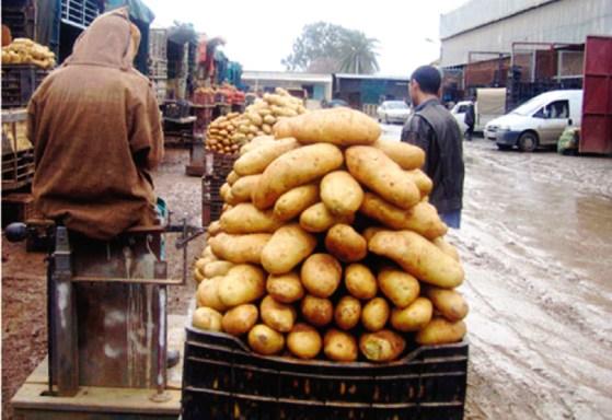 """Pénurie de pomme de terre: """"la la faute au Syrpalac"""""""