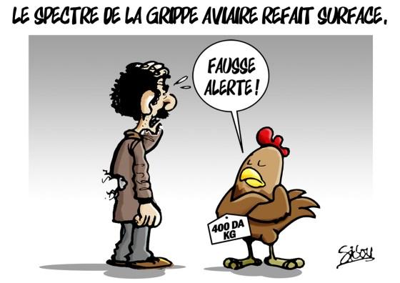 La grippe aviaire