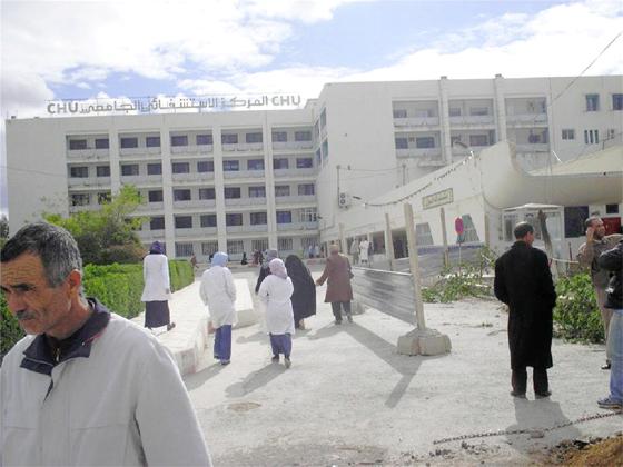 Une 15e transplantation rénale effectuée avec succès à Batna
