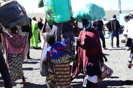Plus de 300 ressortissants nigériens rapatriés