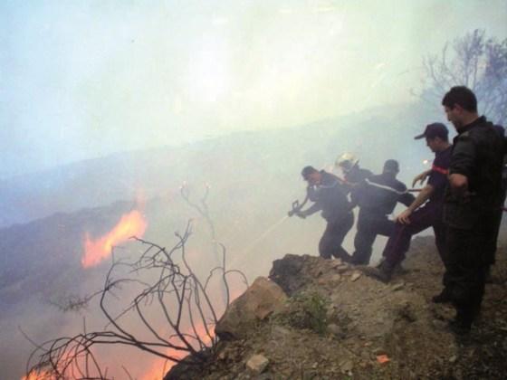Béjaia: 149 ha de végétations détruits par le feu
