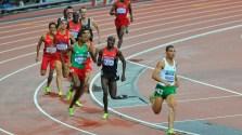 800M: médaille de bronze pour l'Algérien Taoufik Makhloufi