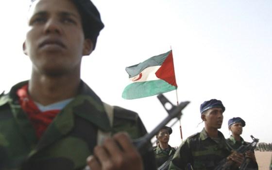 Manœuvres de l'armée sahraouie à Tifariti