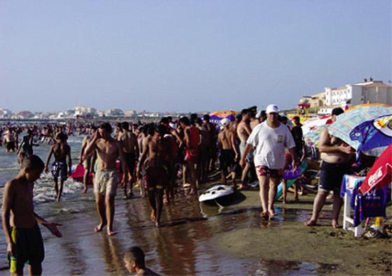 Seul un tiers de nos plages sera gratuit cet été