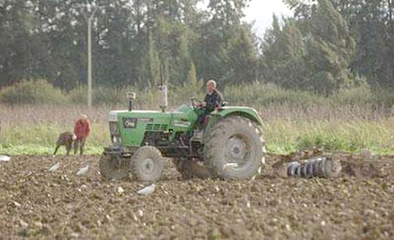 Le secteur agricole passé au peigne fin