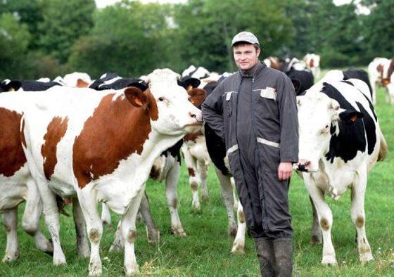 Grande incertitude chez les éleveurs à Tizi ouzou